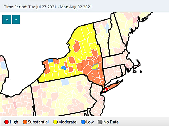 COVID-19: New Counties In NY Reach CDC Level For Indoor Mask Use In Public Settings